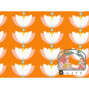 Lotus drop orange