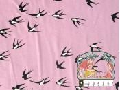 Zwaluwen roos