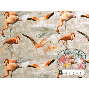 Flamingo tricot pond