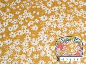 Daisy bed sun