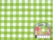 Tafelzeil groen vichy