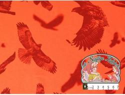 Hawks terra