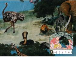 Safariprint