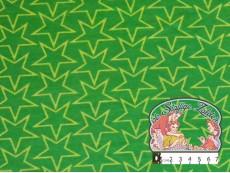 Sweater sterren groen