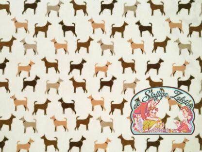 Dog brown white cotton