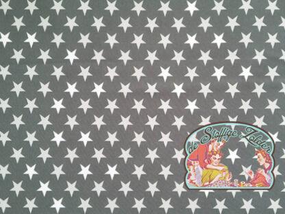 Grey stars softshell