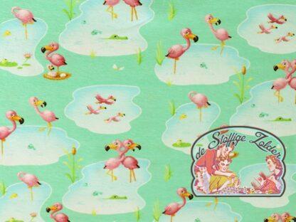 Cuddling flamingo tricot jersey