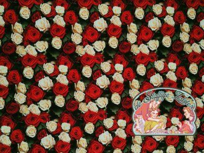 Roses fotoprint jersey