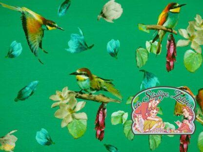 Sonado by Bienvenido Colorido green tricot jersey